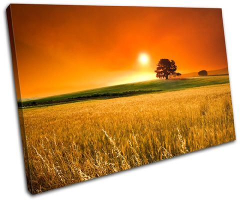 Field Sunset Landscapes - 13-2212(00B)-SG32-LO